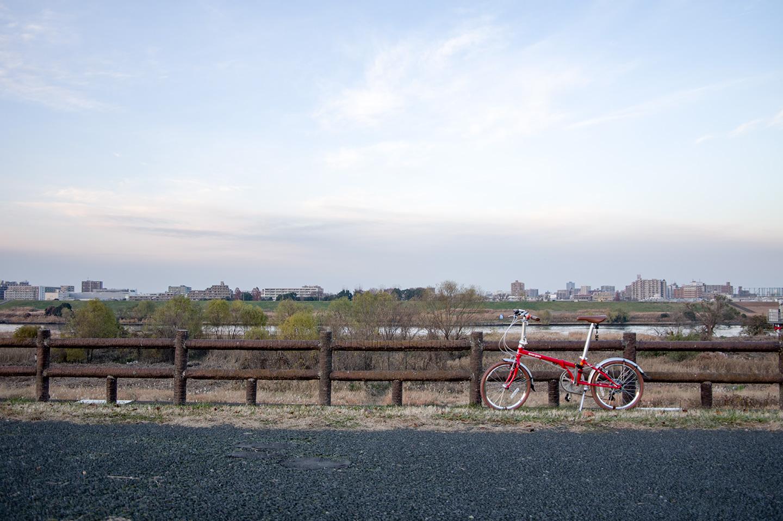 クロモリフレームで20インチの折り畳み自転車 HARRY QUINN GRAPES (2017年モデル) は安いのにステキ